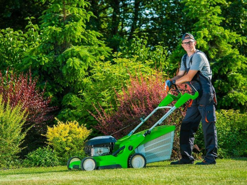 lawn care employing working on a yard
